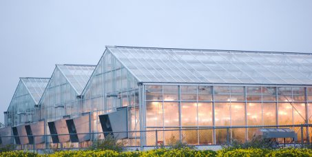 Grow-rooms-air-quality-equipment